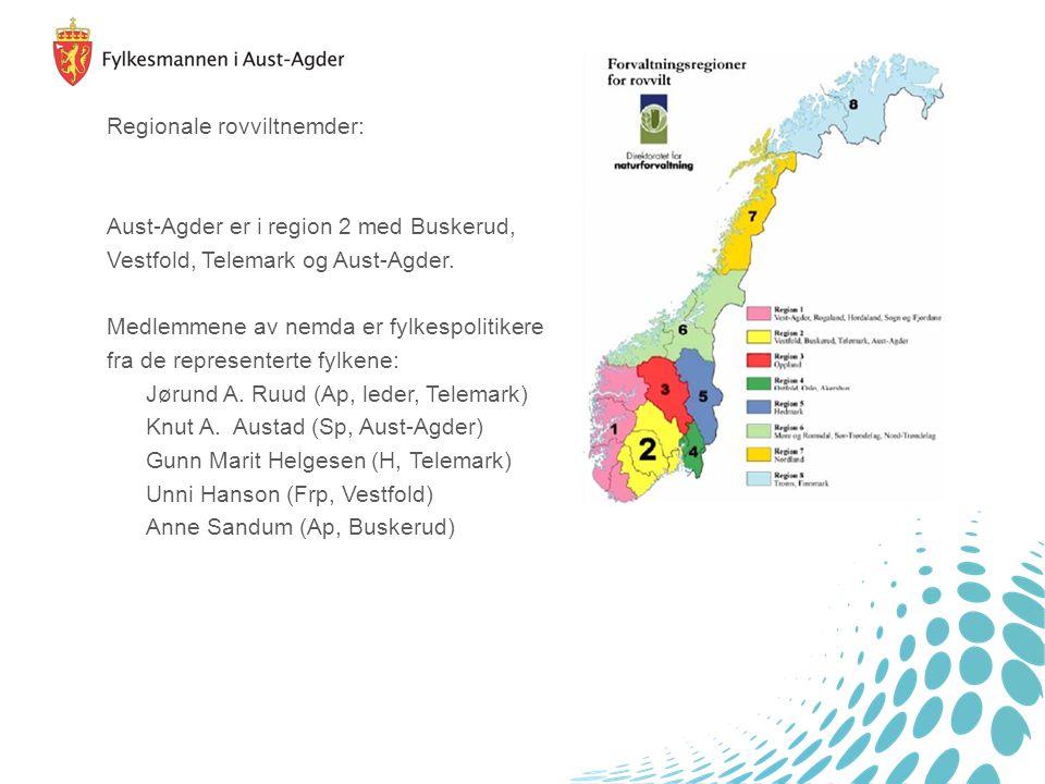 Regionale rovviltnemder: