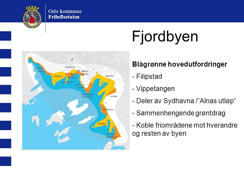Fjordbyen Blågrønne hovedutfordringer - Filipstad - Vippetangen