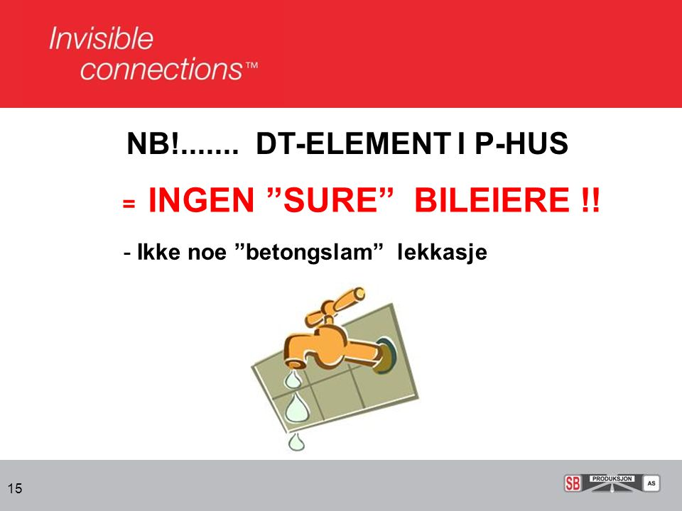 NB!....... DT-ELEMENT I P-HUS = INGEN SURE BILEIERE !!
