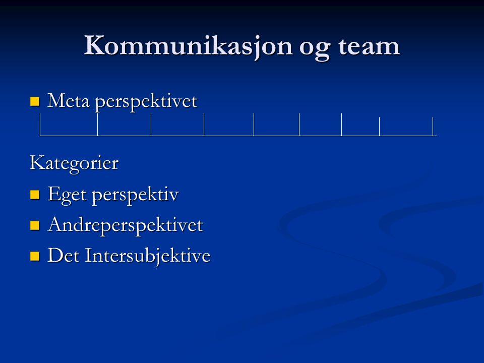Kommunikasjon og team Meta perspektivet Kategorier Eget perspektiv