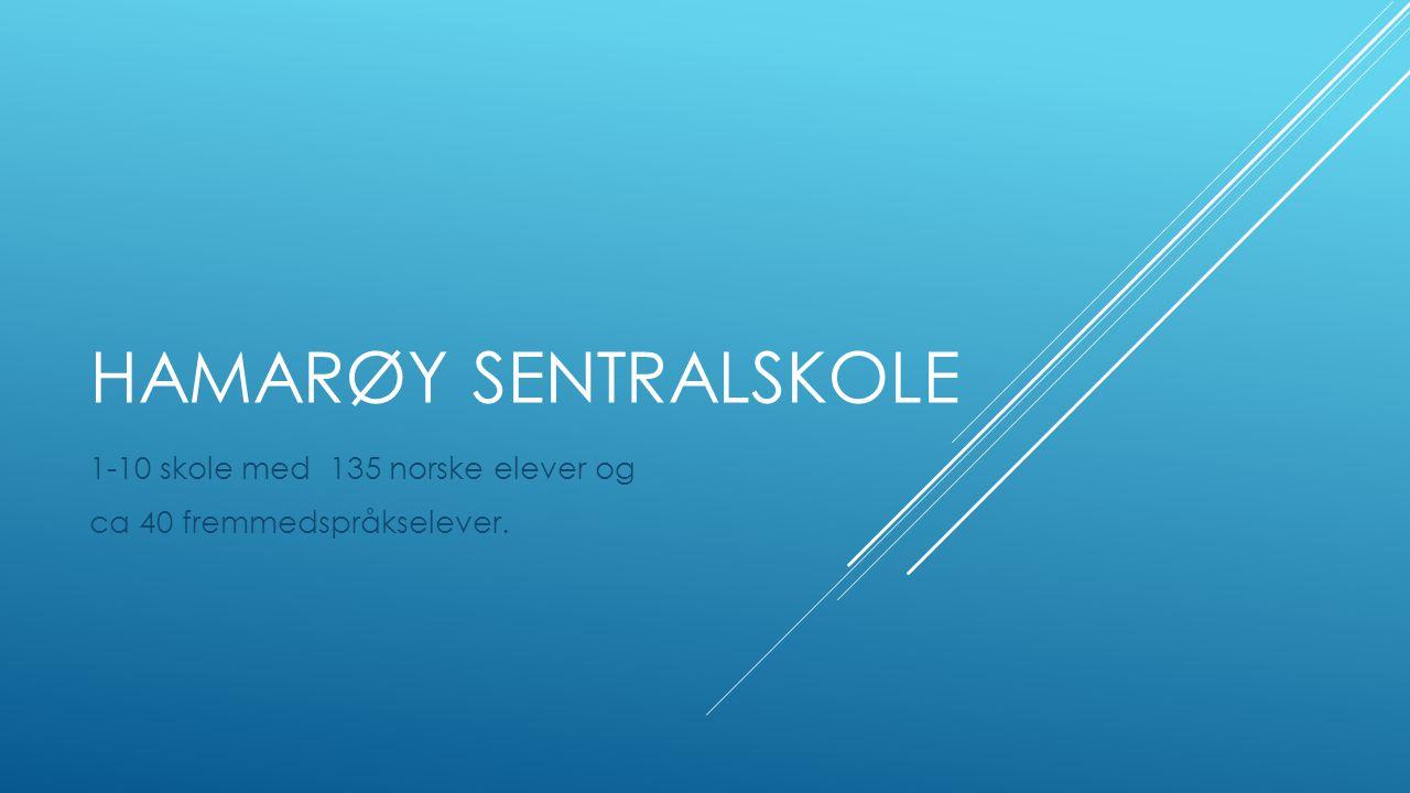 1-10 skole med 135 norske elever og ca 40 fremmedspråkselever.