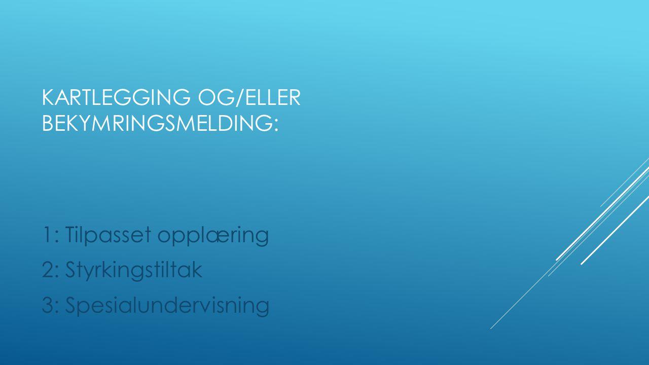 Kartlegging og/eller Bekymringsmelding:
