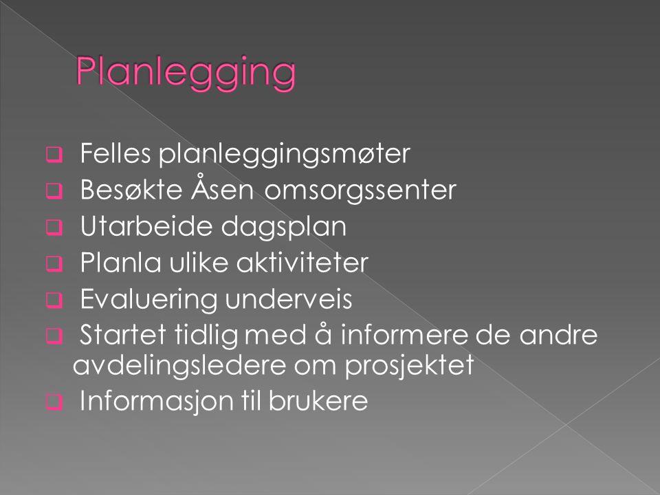 Planlegging Felles planleggingsmøter Besøkte Åsen omsorgssenter