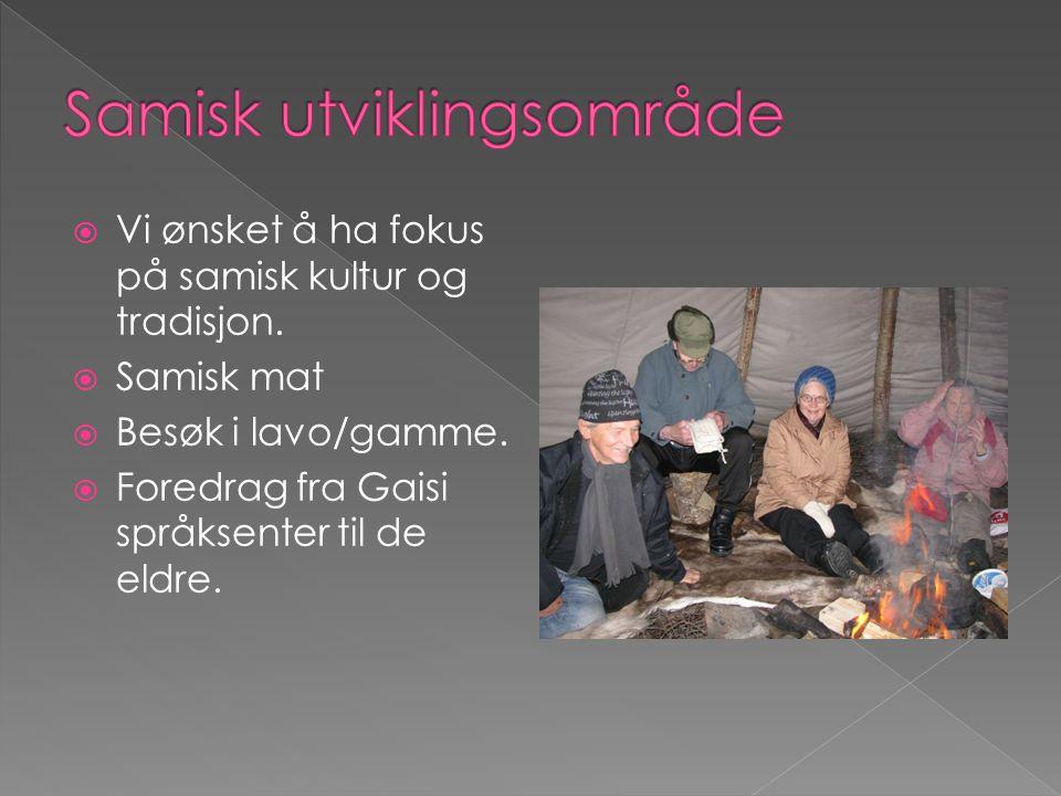 Samisk utviklingsområde