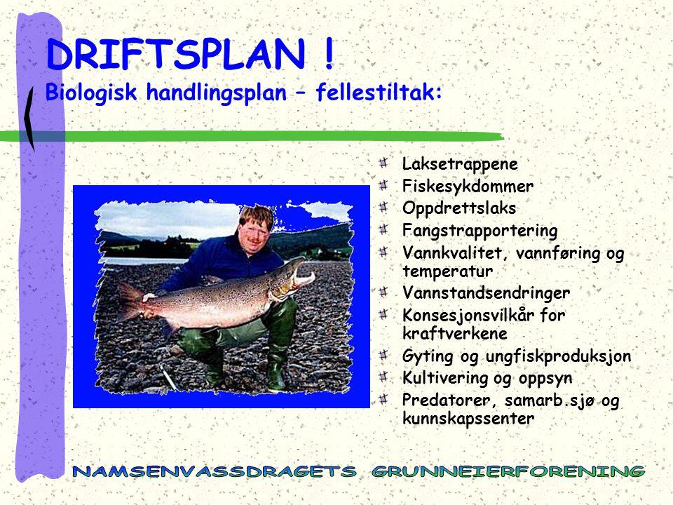 DRIFTSPLAN ! Biologisk handlingsplan – fellestiltak: