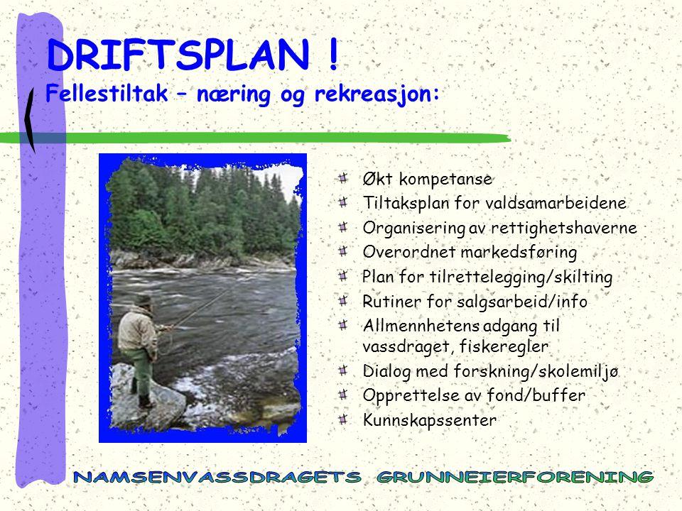 DRIFTSPLAN ! Fellestiltak – næring og rekreasjon: