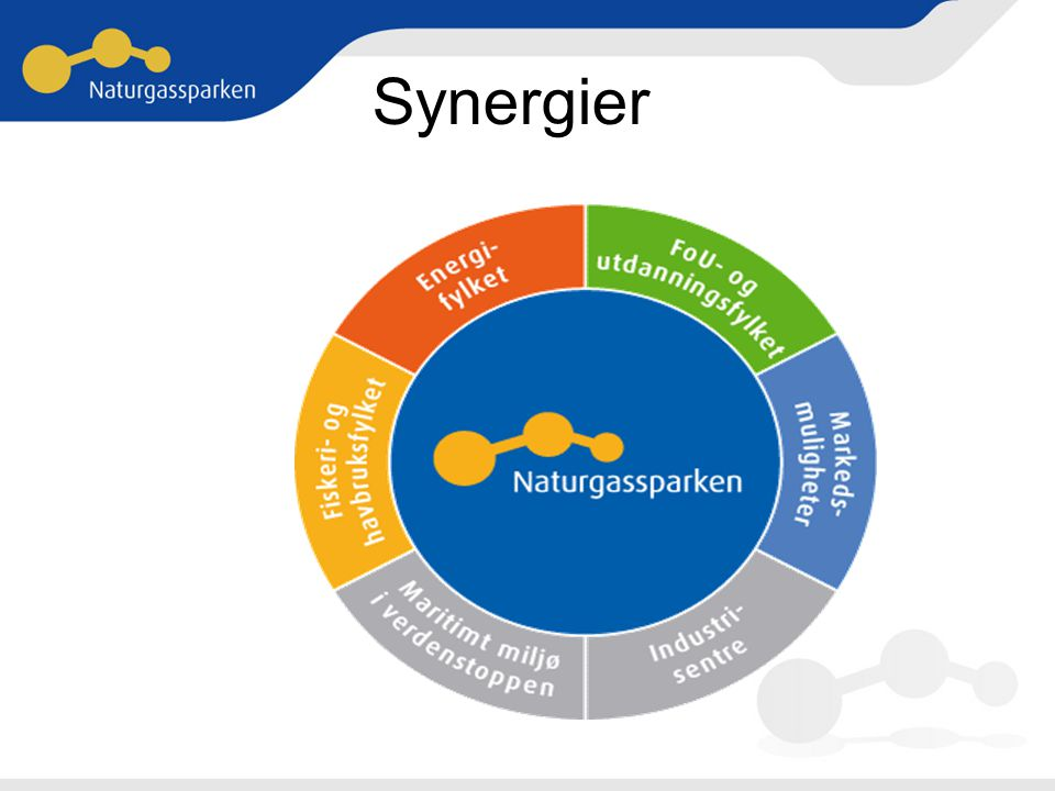 Synergier