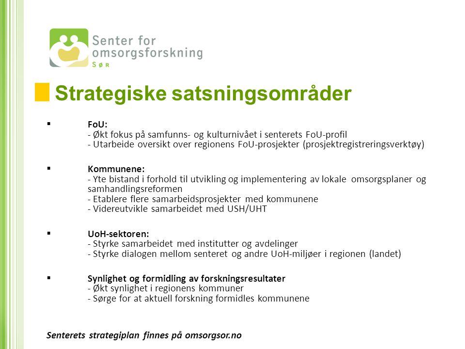 Strategiske satsningsområder
