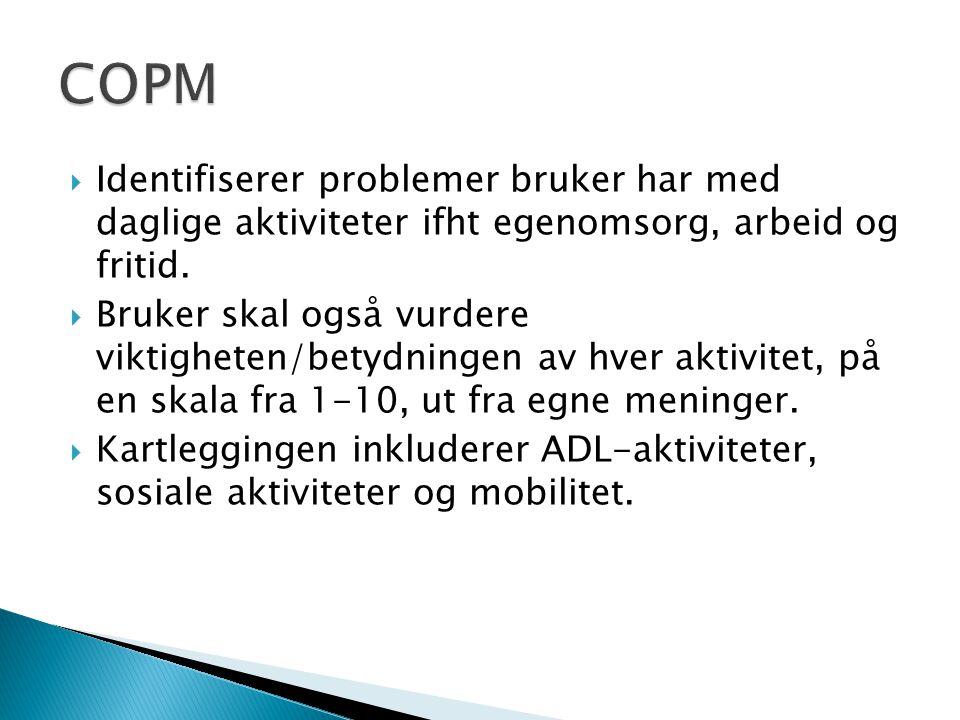 COPM Identifiserer problemer bruker har med daglige aktiviteter ifht egenomsorg, arbeid og fritid.