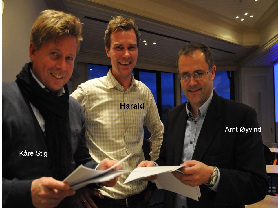 Harald Arnt Øyvind Kåre Stig