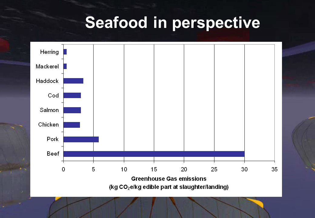 Seafood in perspective