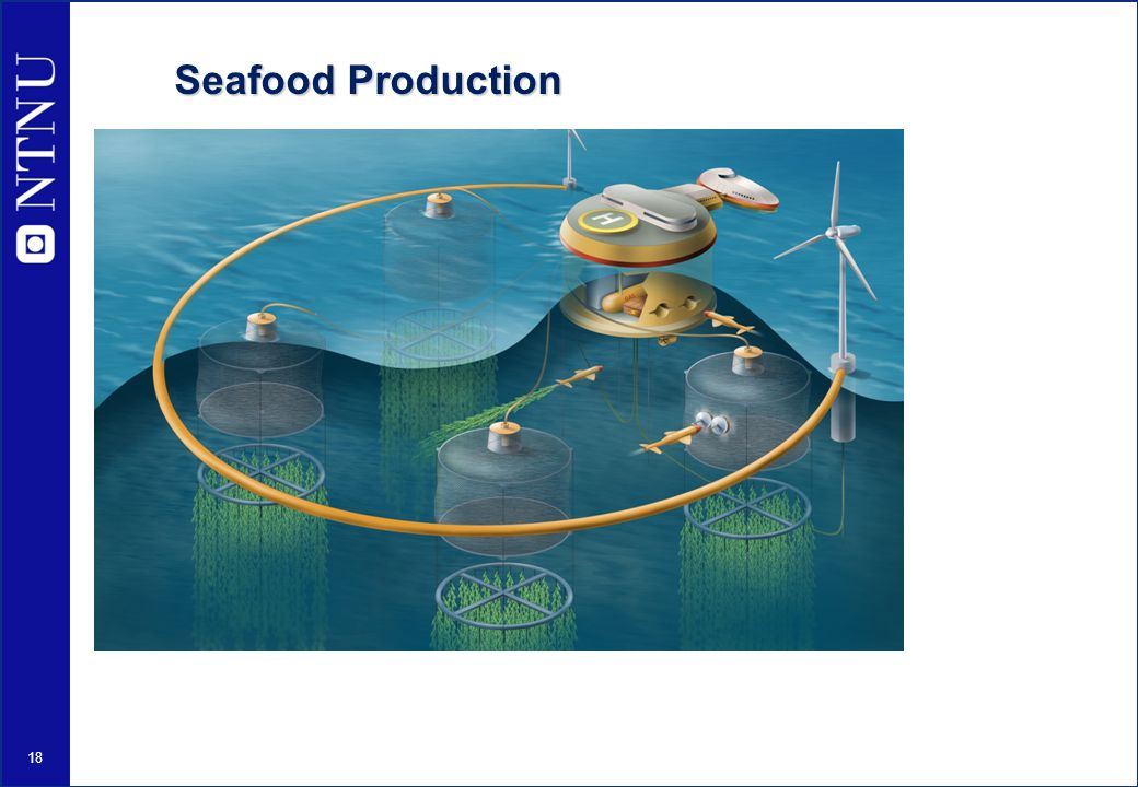 Seafood Production
