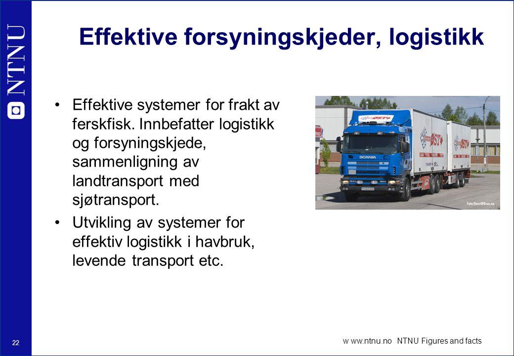Effektive forsyningskjeder, logistikk