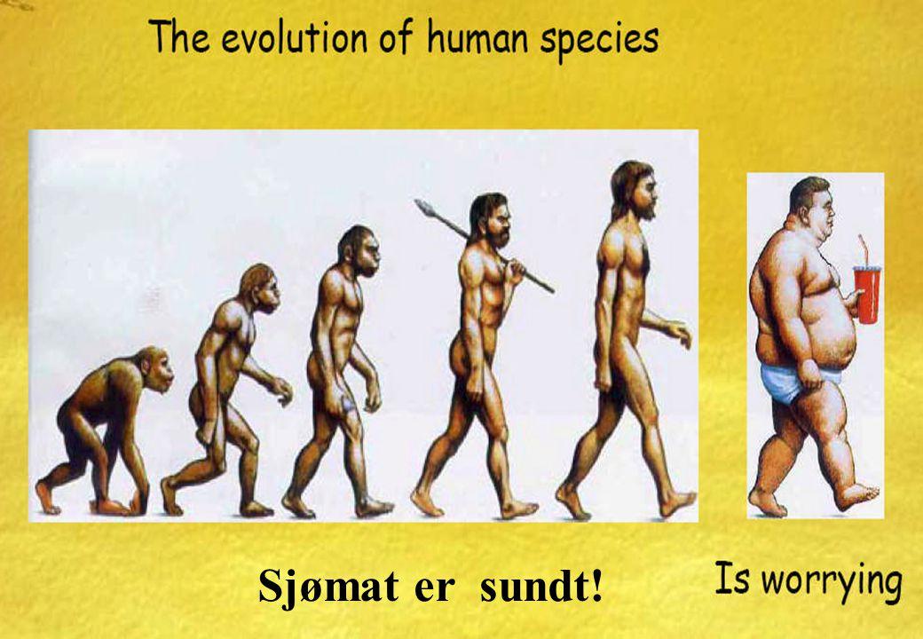 Sjømat er sundt! w ww.ntnu.no NTNU Figures and facts