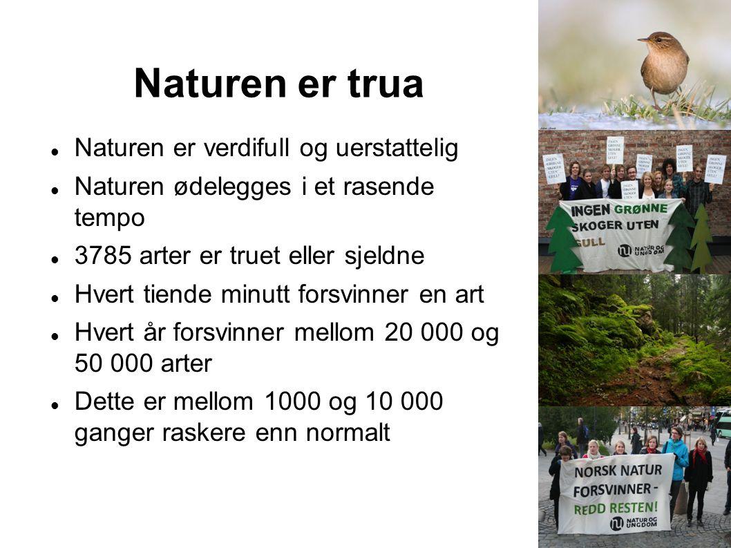Naturen er trua Naturen er verdifull og uerstattelig