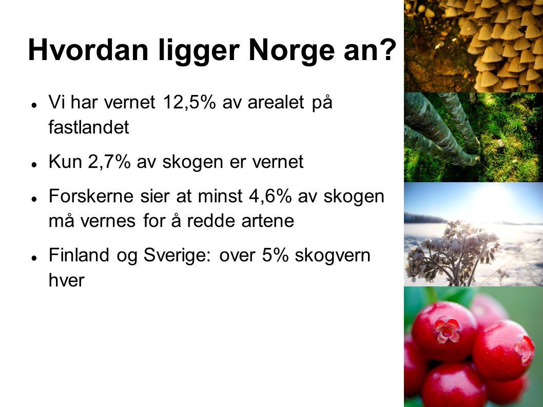 Hvordan ligger Norge an