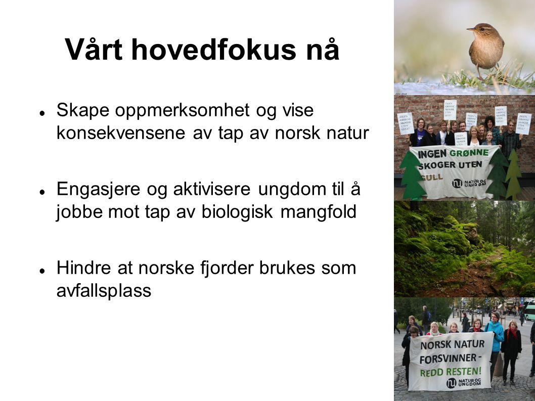 Vårt hovedfokus nå Skape oppmerksomhet og vise konsekvensene av tap av norsk natur.