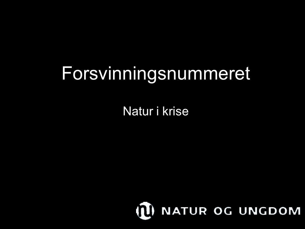 Forsvinningsnummeret Natur i krise