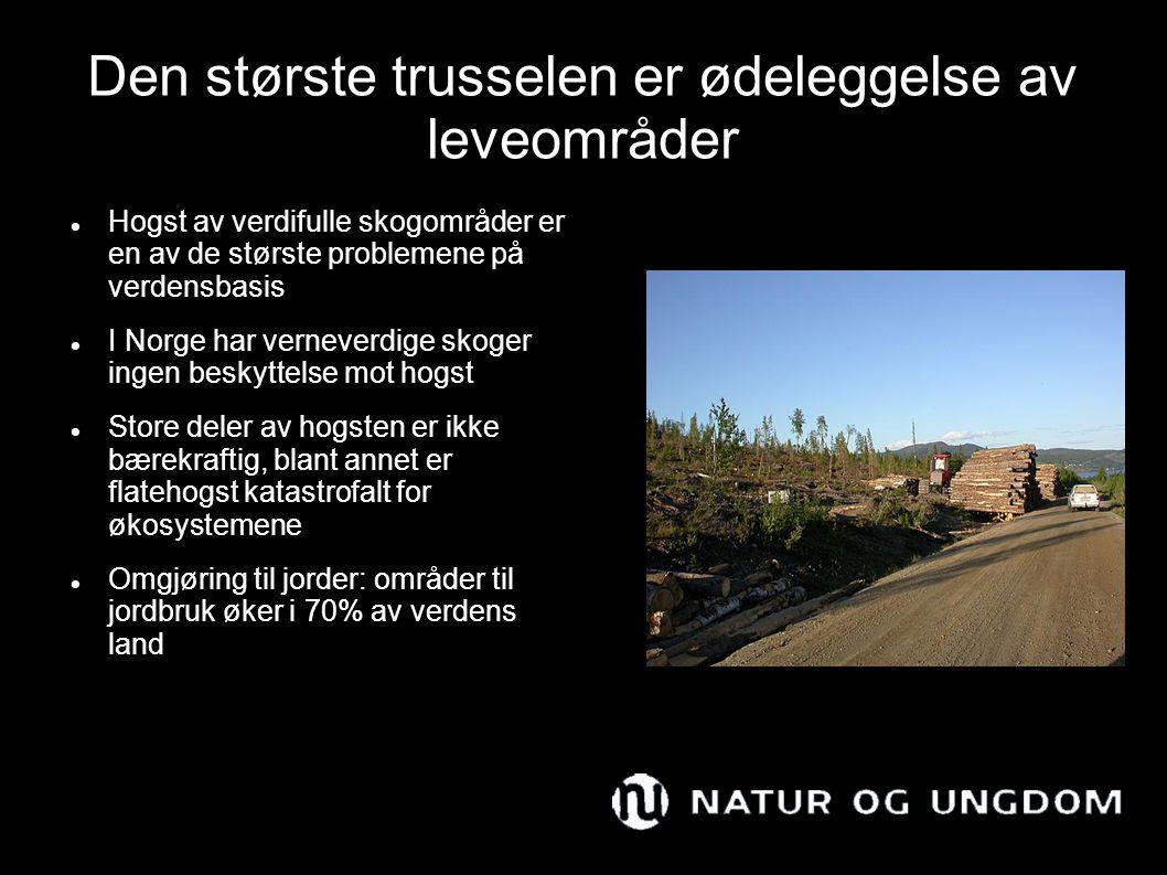 Den største trusselen er ødeleggelse av leveområder