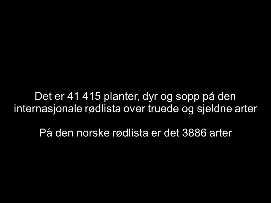 På den norske rødlista er det 3886 arter