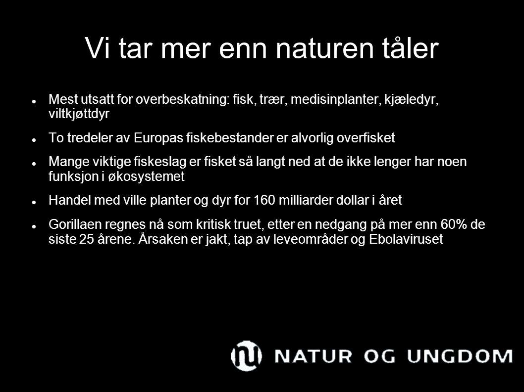Vi tar mer enn naturen tåler