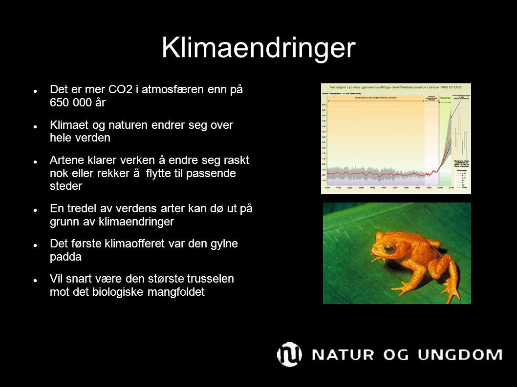 Klimaendringer Det er mer CO2 i atmosfæren enn på 650 000 år