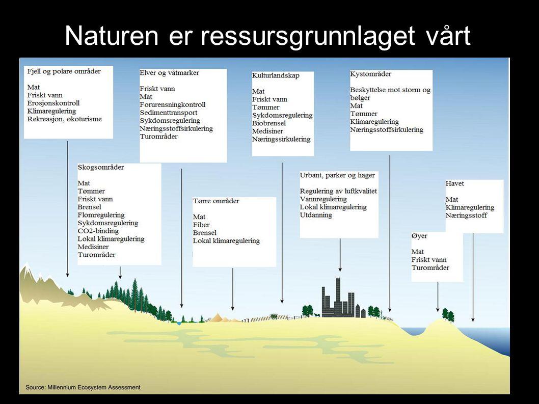 Naturen er ressursgrunnlaget vårt