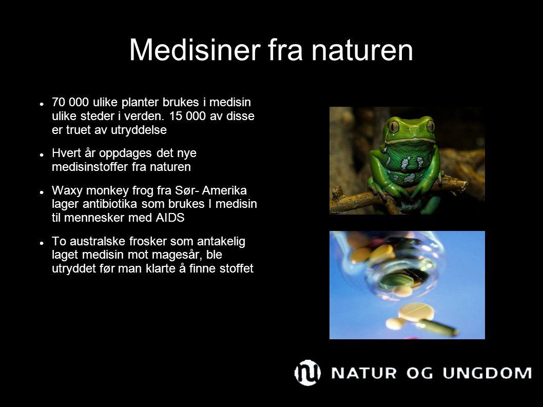Medisiner fra naturen 70 000 ulike planter brukes i medisin ulike steder i verden. 15 000 av disse er truet av utryddelse.