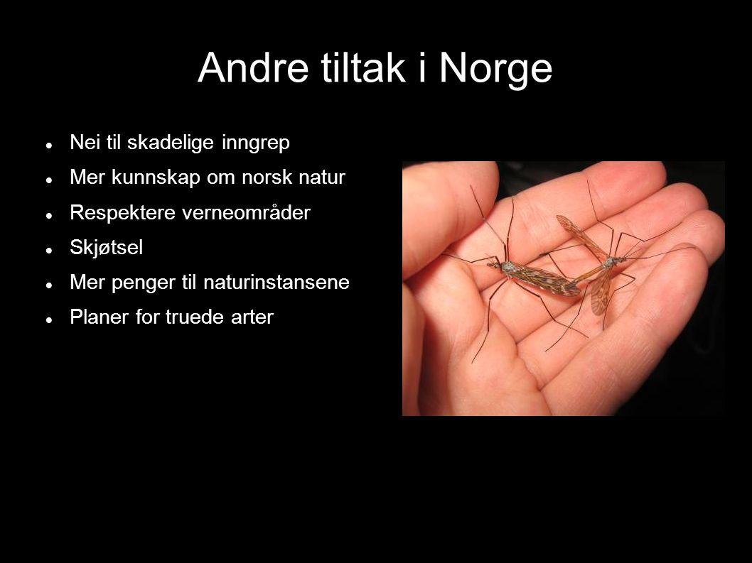 Andre tiltak i Norge Nei til skadelige inngrep
