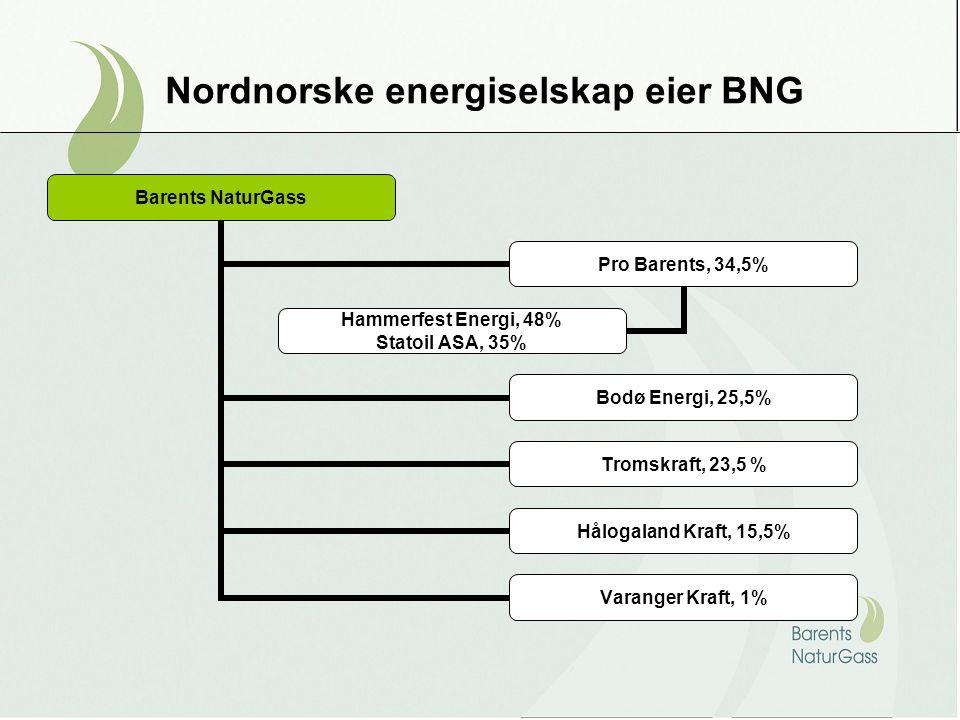 Nordnorske energiselskap eier BNG