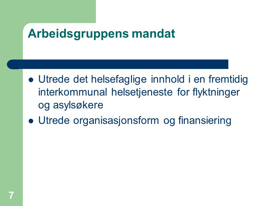 Arbeidsgruppens mandat