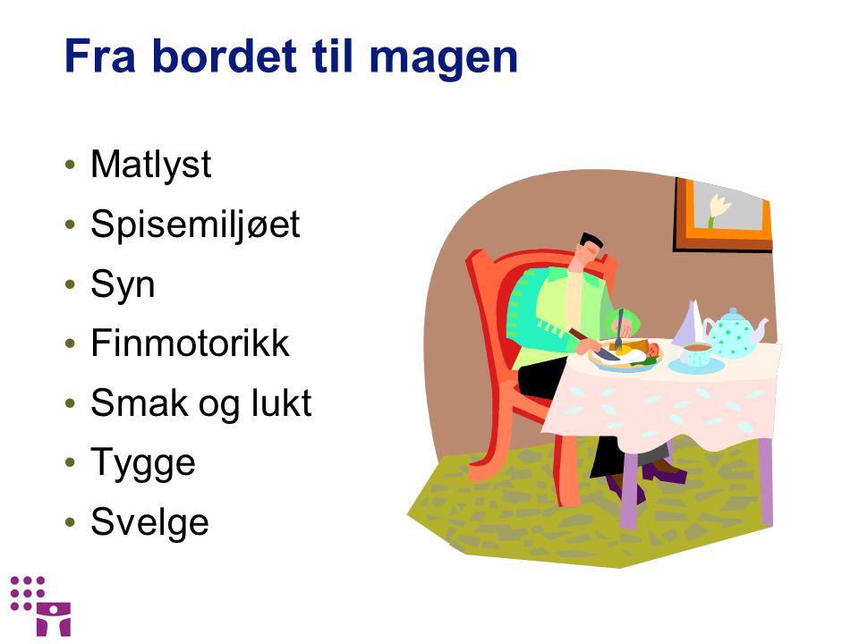 Fra bordet til magen Matlyst Spisemiljøet Syn Finmotorikk Smak og lukt