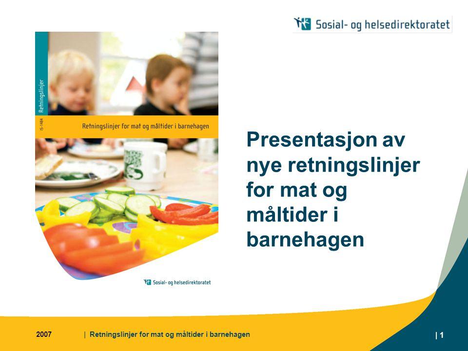Presentasjon av nye retningslinjer for mat og måltider i barnehagen