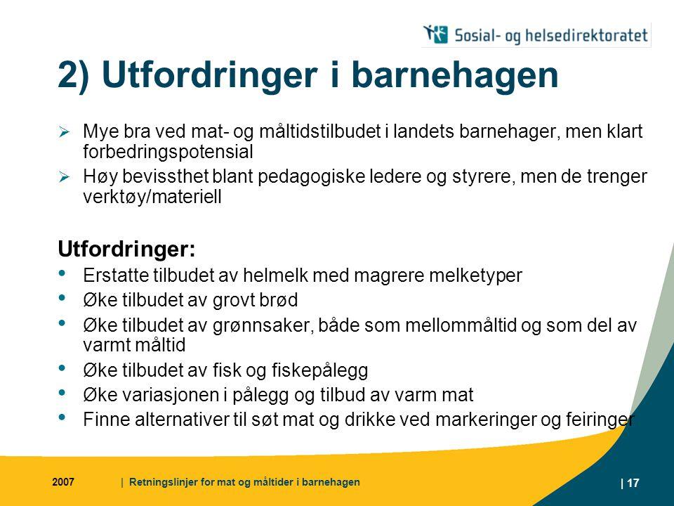 2) Utfordringer i barnehagen