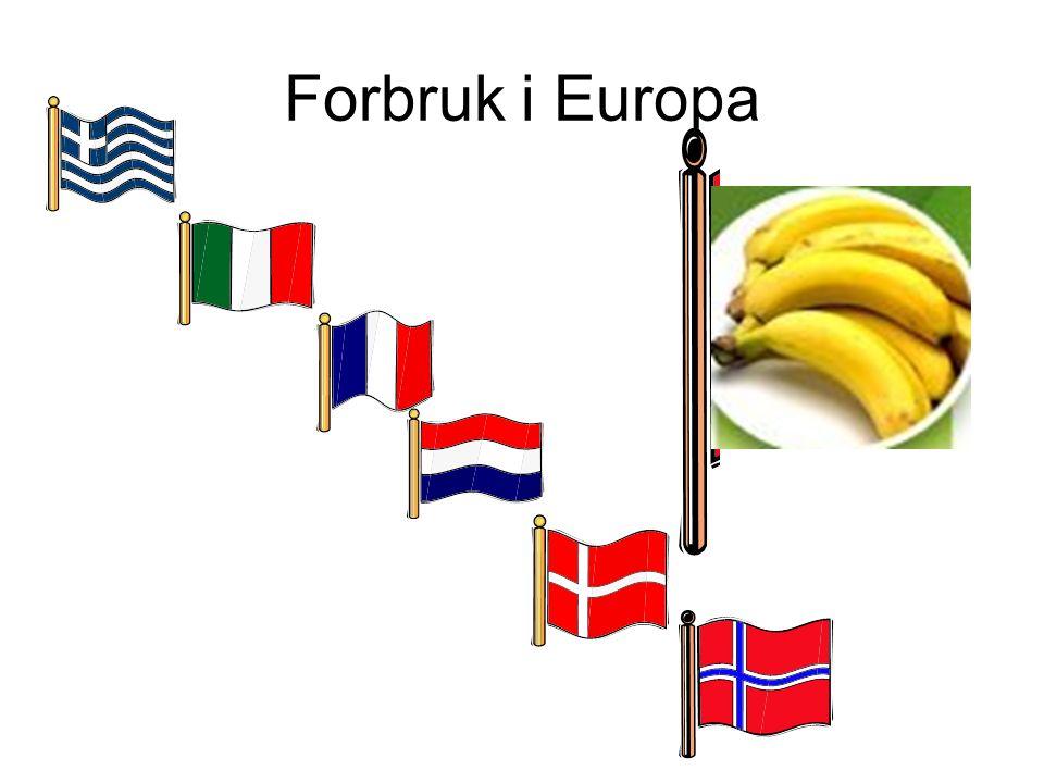 Forbruk i Europa