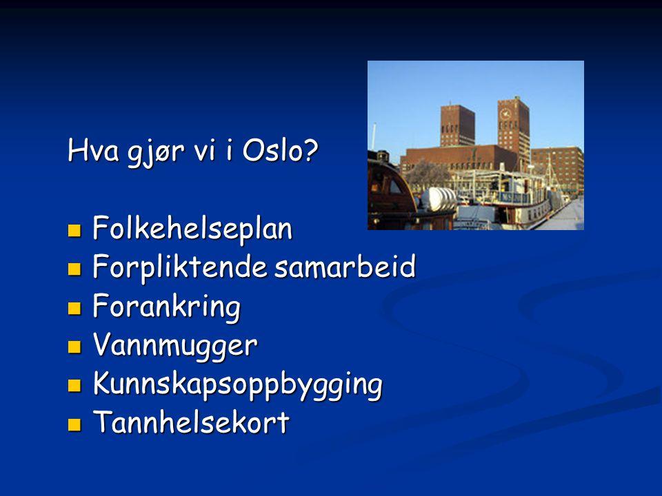 Hva gjør vi i Oslo Folkehelseplan. Forpliktende samarbeid. Forankring. Vannmugger. Kunnskapsoppbygging.