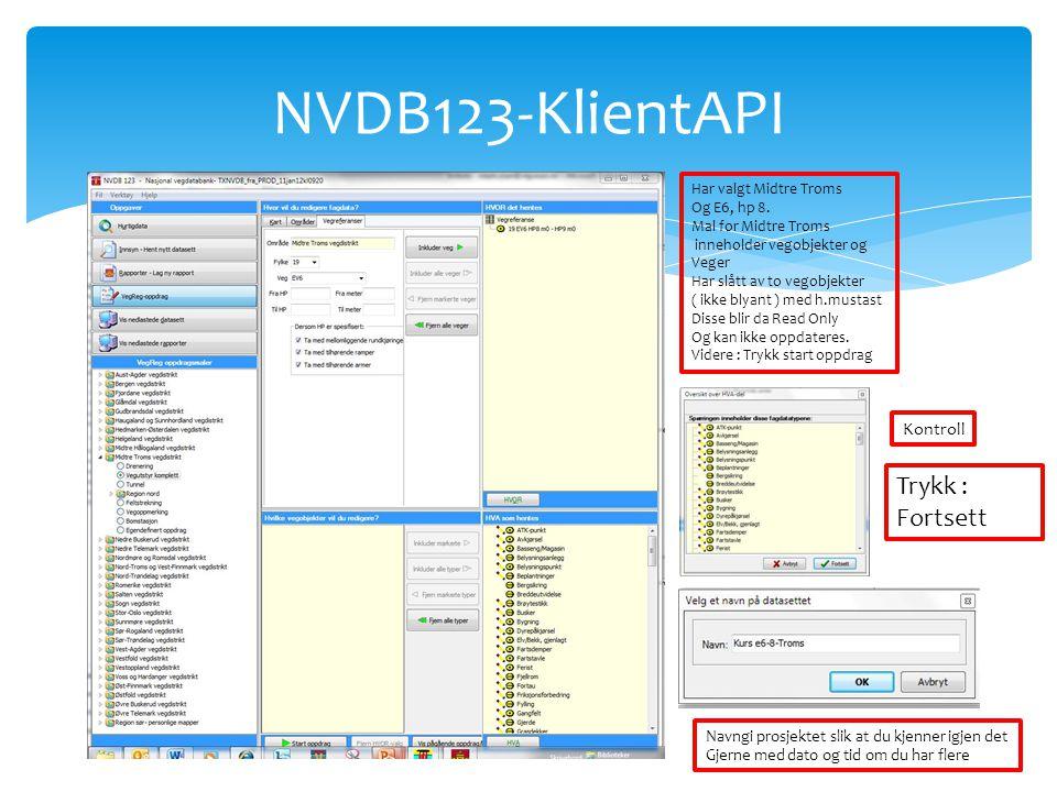 NVDB123-KlientAPI Trykk : Fortsett Kontroll