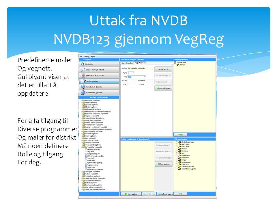 Uttak fra NVDB NVDB123 gjennom VegReg