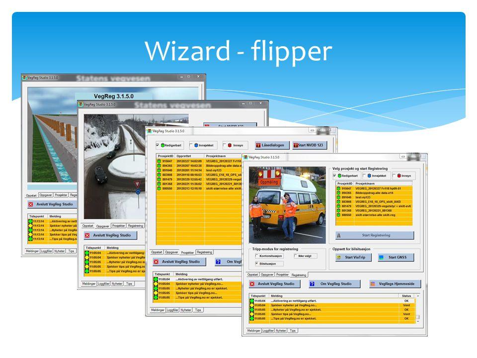 Wizard - flipper