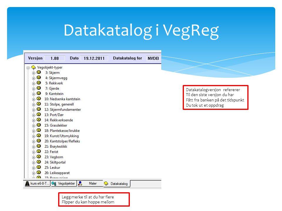 Datakatalog i VegReg Datakatalogversjon refererer