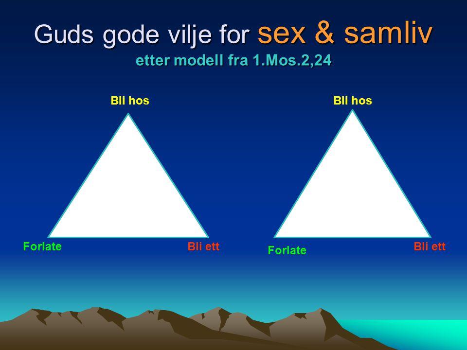Guds gode vilje for sex & samliv etter modell fra 1.Mos.2,24