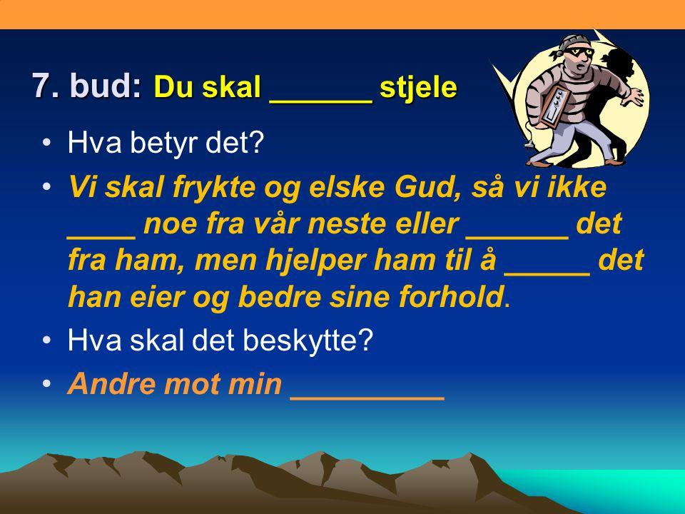 7. bud: Du skal ______ stjele