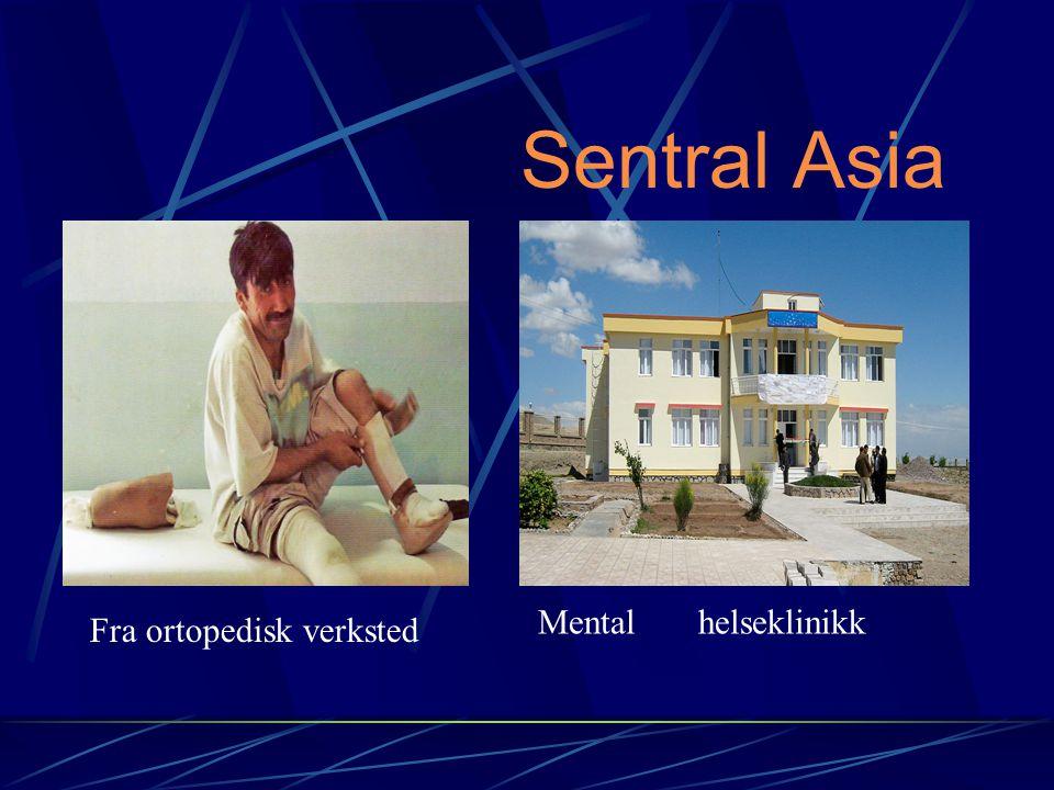 Sentral Asia Mental helseklinikk Fra ortopedisk verksted