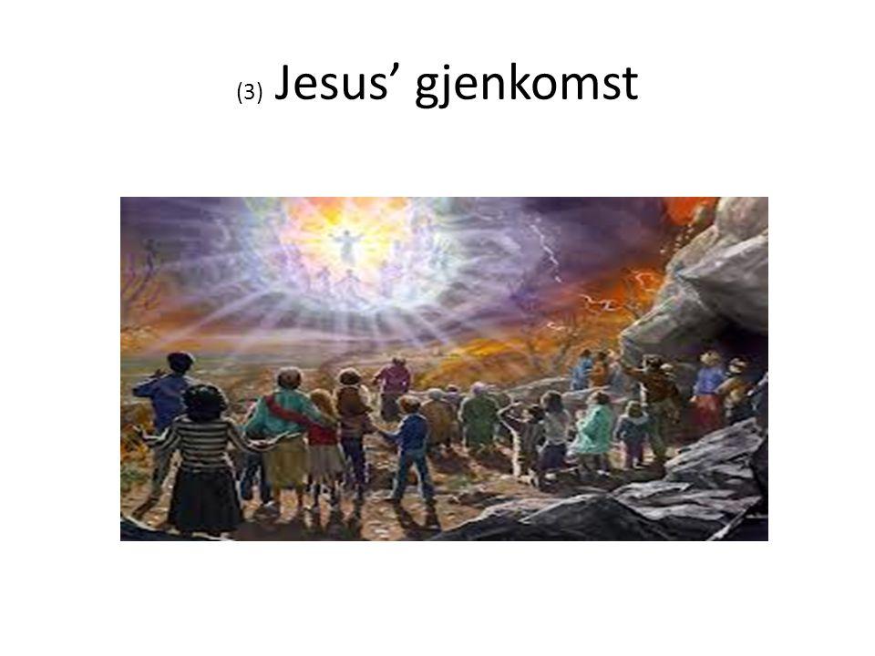 (3) Jesus' gjenkomst