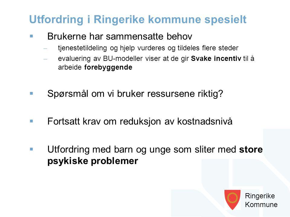 Utfordring i Ringerike kommune spesielt