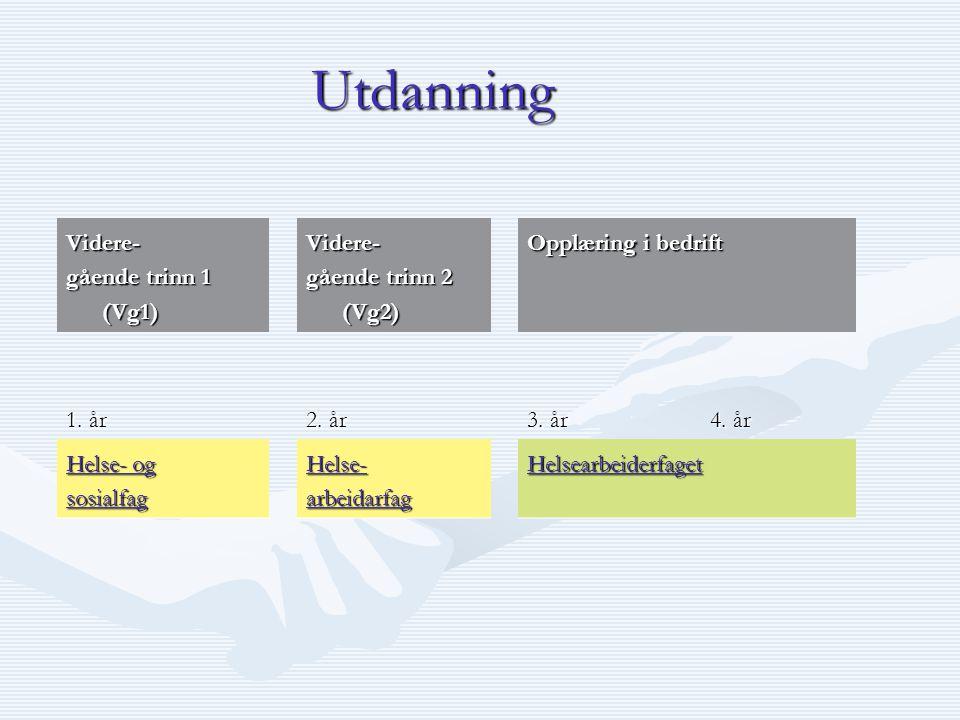 Utdanning Videre- gående trinn 1 (Vg1) gående trinn 2 (Vg2)