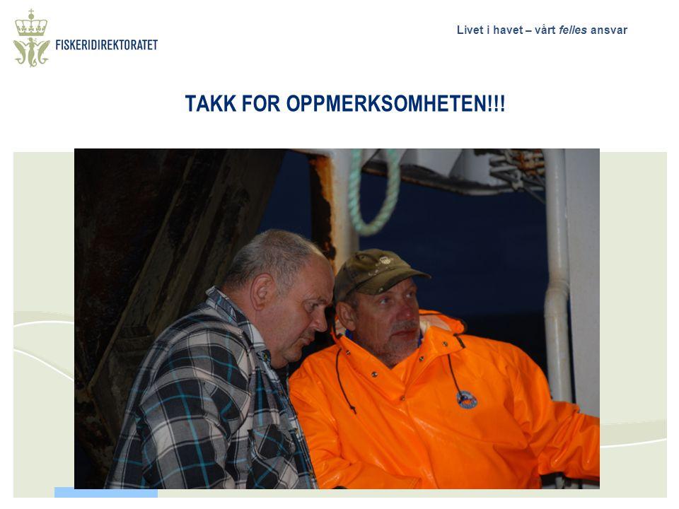 TAKK FOR OPPMERKSOMHETEN!!!