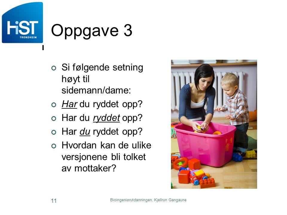 Bioingeniørutdanningen, Kjellrun Gangaune