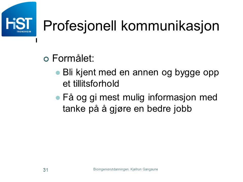 Profesjonell kommunikasjon