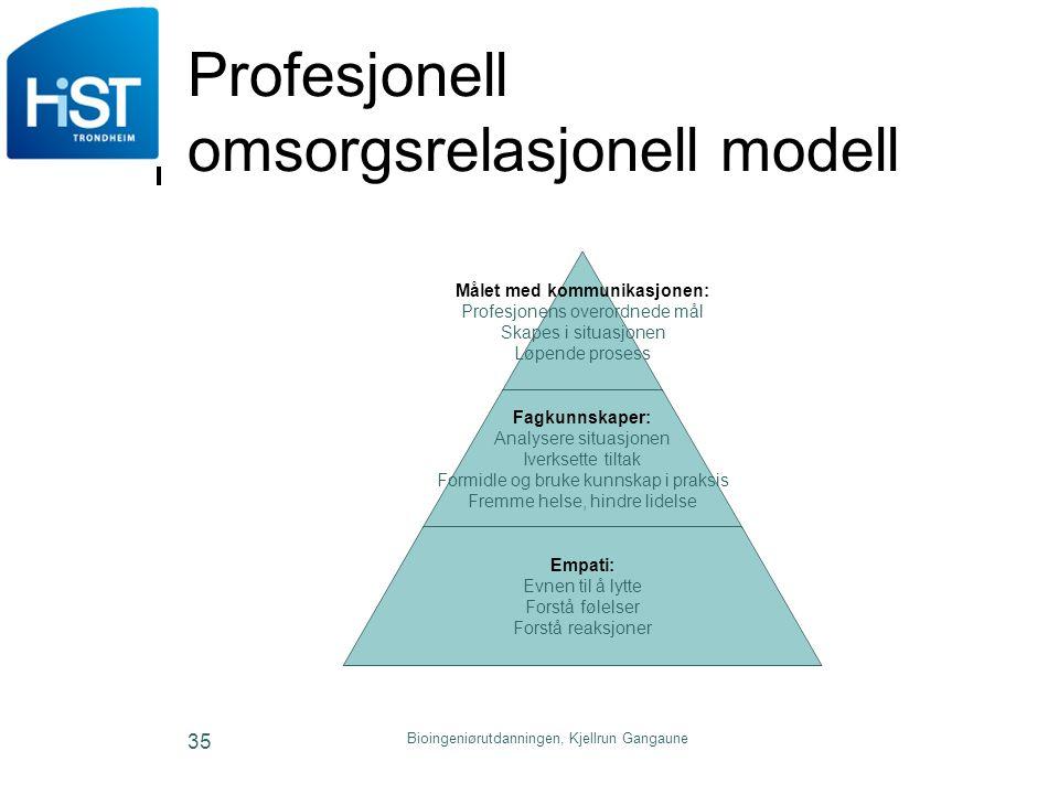 Profesjonell omsorgsrelasjonell modell
